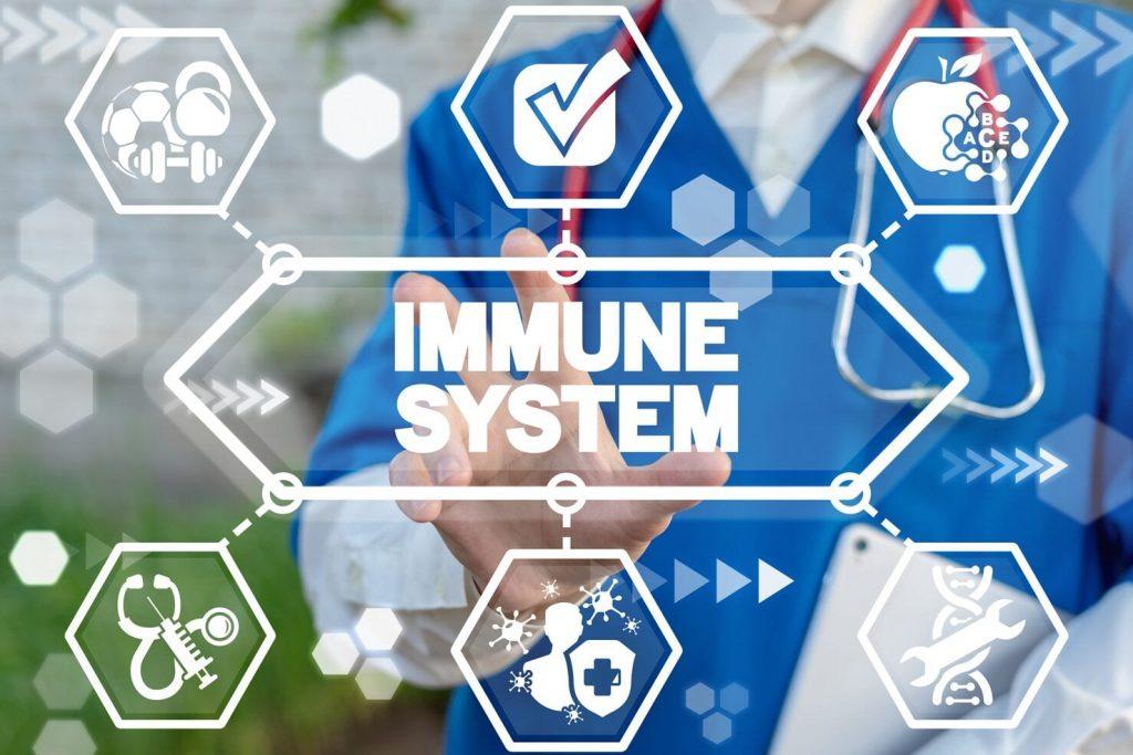 Microbiota inmunidad